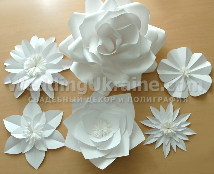 Белые большие цветы из бумаги 4